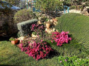 המסלעה בחזית הימנית של הצימר בכפר ורדים