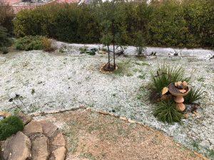 שלג בכפר ורדים