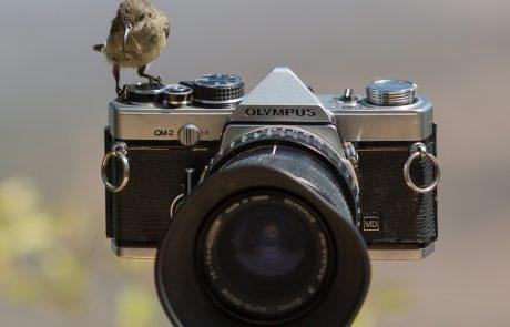 צופית על מצלמת OM-2